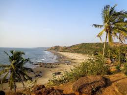 the top 10 backpacker hostels in goa global gallivanting travel blog
