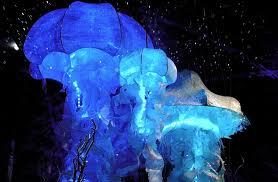 Jellyfish Pendant Light The Jellyfish Chandelier Phenomenon Lightopia U0027s Blog The