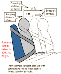 thescienceclassroom seat belts
