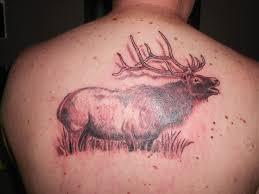 elk tattoos elk tattoo elk tattoo elk tattoo elk tattoos