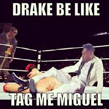 Miguel Meme - miguel s fan kicking stage dive image gallery know your meme