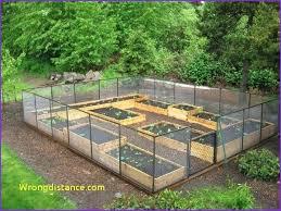 Best Garden Layout Best Garden Layout Design Raised Bed Gardens Raised Beds Garden