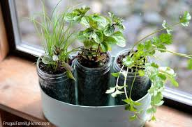Herb Garden Gift Ideas 10 Gift Ideas From The Garden Frugal Family Home