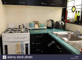 Sydney Apartment Kitchen Interiwith Black Kitchen Units Green - Kitchen sinks sydney