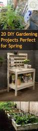 20 diy gardening projects perfect for spring bless my weeds