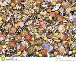 beach sand micro stock photo image 84061504
