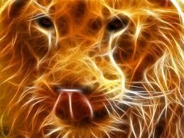imagenes abstractas hd de animales león neón abstracto hd pinterest imágenes fondo de pantallas
