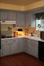 Staining Kitchen Cabinets Without Sanding Kitchen Companies That Paint Kitchen Cabinets Painting Kitchen