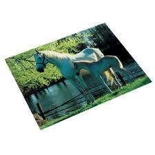 sous cheval bureau sous mains de bureau 530 x 400 mm cheval et poulain au lac