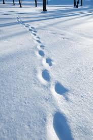 برف و پاکی ببار ای برف