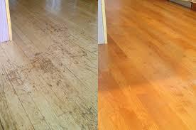 pet scratch marks bellingham hardwood floor repair