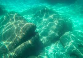 top 10 places to go snorkeling in lake tahoe laketahoe