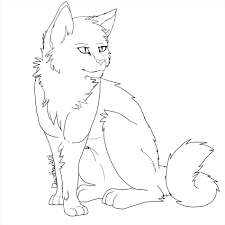 birds animals online how realistic cat drawing outline to draw