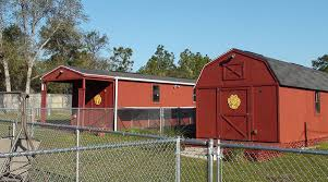 Red Barn Kennel Spring Hill Dog Boarding Rates Four Paws Dog Day Camp And Kennel