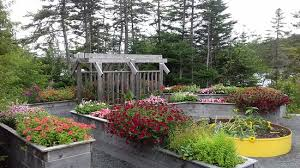 Mun Botanical Gardens August In The Flower Garden Picture Of Memorial Of
