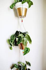 gold dipped hanging planters u2013 a beautiful mess