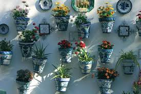 free picture still life exterior flower home decoration house