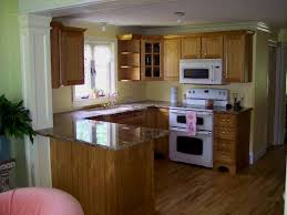 Small Cabinet For Kitchen Shaker Style Cabinets For Kitchen U2013 Thelakehouseva Com