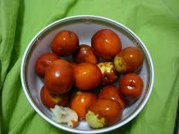 fresh dates fruit fresh dates a fruit from china dalian evening news