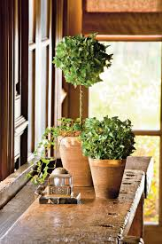 How To Decorate A Pot At Home Indoor Container Garden Ideas Southern Living