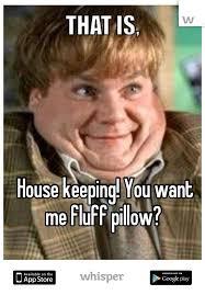Housekeeping Meme - keeping you want me fluff pillow