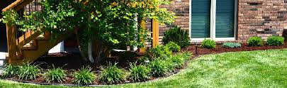 and landscape shrub installation springfield mo