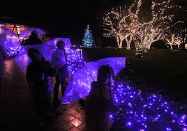 cost of christmas lights the magic of christmas at butchart gardens