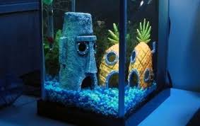 fish tank abodes spongebob squarepants bottom