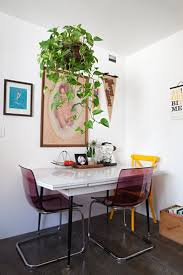 100 best pothos philodendron images on pinterest apartment