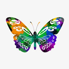 colorful butterfly color butterfly colorful clipart png image