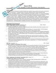 development resume sample