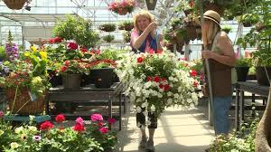 floral shops floral shops say they try to avoid delivering flowers on s day
