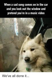 Sad Dog Meme - 25 best memes about sad songs sad songs memes