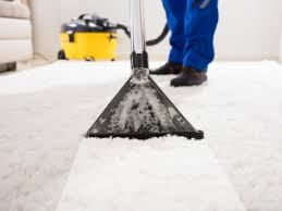 carpet upholstery apollo carpet upholstery cleaning missoula mt