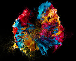 paint images pop art gorgeous blooms of paint made with exploding balloons