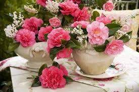pretty flower garden ideas red rose flowers garden greatindex net climbing bush trellis idolza