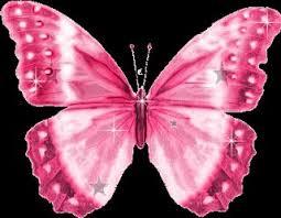 9 butterflies images butterflies cartoon