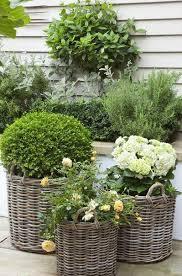 44 best my garden images on pinterest small gardens white