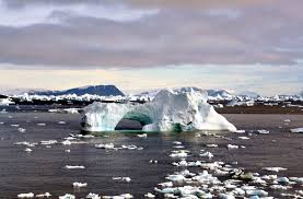 portal arctic selected picture wikipedia