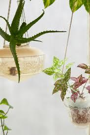 nicole u0027s pendant lamp hanging planters jungalowjungalow