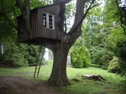 file tree house geograph org uk 1389137 jpg wikimedia commons