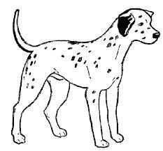 coloriage imprimer de chien coloriage chien et chat a imprimer
