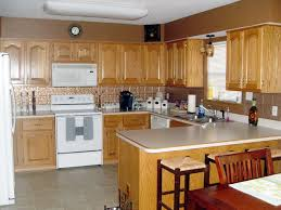 Delighful Kitchens With Oak Cabinets And White Appliances Kitchen - Painting oak kitchen cabinets white