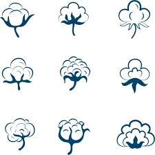 cotton flowers cotton flowers icons collection various shapes sketch vectors