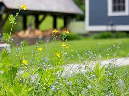 solo farm to table solo farm table home south londonderry vermont menu prices