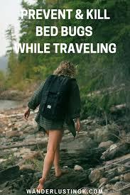 prevent u0026 kill bed bugs u0026 sand fleas while traveling