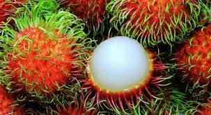 thanksgiving food trivia food trivia quiz name 10 weird fruits from the pictures provided