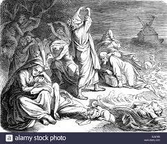 religion deluge myth illustration in a religious book 1875