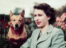 queen elizabeth dog queen elizabeth dog susan queen elizabeth kin lesser royals