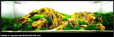 Mountain Aquascape Mountain Landscape Style Aquascape All Aqua Pinterest